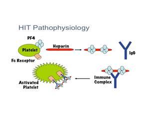 Anticorpi anti-complesso PF4/Eparina